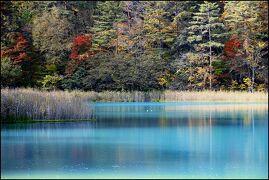 ◆錦秋の裏磐梯~秋彩のラビリンス・五色沼にハマってみた