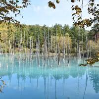秋の北海道旅行 釧路~阿寒~サロマ湖~富良野~札幌 ④美瑛から札幌・小樽