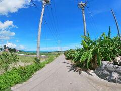 沖縄離島の旅 1・2日目(小浜島)