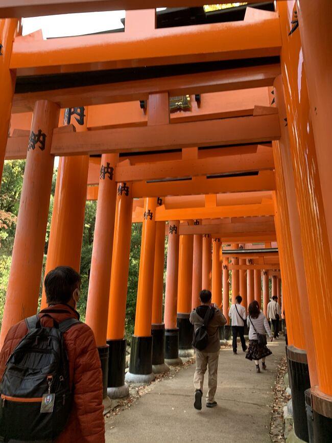 紅葉の季節がやってきました。急に「そうだ、京都の紅葉を観てみよう」と思いつきました。今回は紅葉が有名な場所に重点を置いて訪れる場所を決めました。