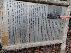 2019年末 寒い東京を抜けだし 小笠原で南国気分を味わえた -前半-