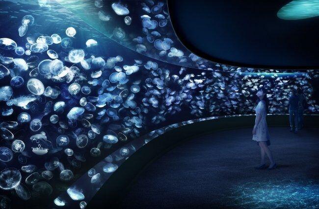サンシャイン水族館は、東京都豊島区東池袋・サンシャインシティ内のワールドインポートマートにある水族館。1978年10月開館。株式会社サンシャインエンタプライズが運営している。旧称はサンシャイン国際水族館。<br />様々な年代の方が楽しめるイベントや、生き物たちを間近で観ることが出来るパフォーマンスが毎日開催されております。<br /><br />https://sunshinecity.jp/aquarium/