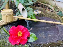 2021年3月 週末温泉旅 in 鹿児島・妙見温泉 おりはし旅館