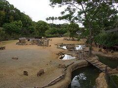 「とくしま動物園」と「しろとり動物園」に行ってきました。1日目
