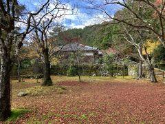 京都高雄(定期観光バスと二条城)