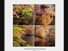 ◆秋彩のコンチェルト♪水鏡の滑川砂防ダム 2