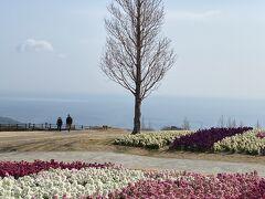 春はまだかな?淡路島で伊弉諾神宮、洲本城址、あわじ花さじき