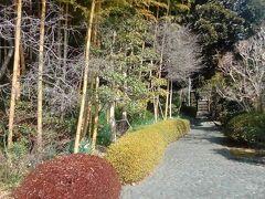 田子の浦と湧き水の街~富士を歩く~