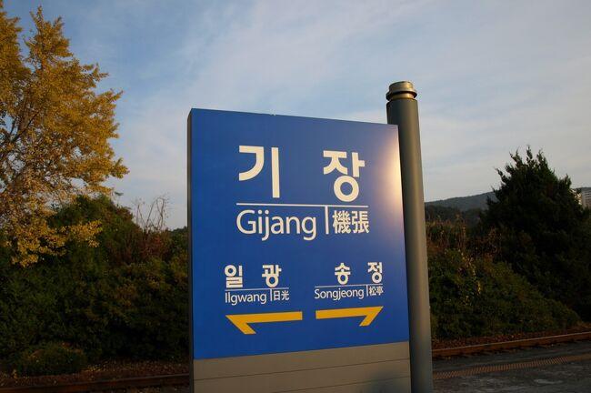 釜山で蟹と言ったら機張。思い立ったら行ってみよう!<br />という事でJR九州のビートルを予約、行きは予約できたのですが、帰りは満席で予約ができず関釜フェリーでの帰国となりました。<br />今回は韓国・釜山から列車で約30分で行ける機張(キジャン)で蟹を食べる事がメインテーマ。ただそれだけの事ですが、特に計画もせず行きたいと思ってすぐ実行した旅行にお付き合いください(笑)<br /><br />日程<br />2007年11月23日<br />下関 JR 博多<br />博多港国際ターミナル ビートル 釜山港国際旅客ターミナル <br />釜田 セマウル号 機張<br />機張 路線バス 釜山<br /><br />11月24日(土)<br />釜山 関釜フェリー<br /><br />11月25日(日)<br />下関港国際ターミナル