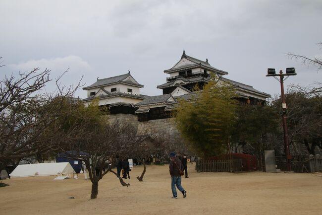 愛媛旅行記3日目!いよいよ松山観光です!<br />今まで西条・今治・宇和島・愛南と観光してきましたが、愛媛県の県庁所在地、松山の観光です。<br />松山と言ったら現存天守の伊予松山城!って事で訪れました。<br /><br />この旅行記は12月14日の分なのですが、この日は月曜日です。そんなわけで多くの公共施設は休みになっていて、回れなかったところもありました。それは残念ですが、逆に見たいところをゆっくりまわれて良かったのかなと思っています。<br />朝JR松山駅でアンパンマン列車を撮影したあと伊予鉄市内線に乗車。松山駅近くのホテルだったので、伊予鉄は何回も見ていましたが乗車は初めて。市内線は思っていた以上に系統が複雑で最初から乗り間違えがありましたが、伊予鉄の博物館の坊ちゃん列車ミュージアムへ。なんとスタバの中にミュージアムがありました。その後は市内線で松山の繁華街、大街道へ向かい松山城へのリープウェイ乗り場へ。リフトとロープウェイがありましたが迷わずロープウェイを選択!高所恐怖症にはリフトはきつい。<br />ロープウェイを降りてもすぐに本丸ではなく当時の形で残るいくつかの門をくぐり本丸へ向かい、お金を払い検温をしていよいよ天守と小天守へ。<br />写真の枚数は多いですが、中心は松山城になります。<br /><br />それでは松山観光編になります!