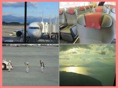 冬の九州2014(1)JAL空旅(羽田―鹿児島)