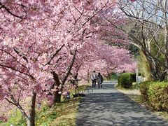 春を感じた1泊2日伊豆旅行 下田泊