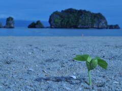 マレーシア ランカウイ島のリゾート満喫の旅 その1 大人なリゾート タンジュンルー編
