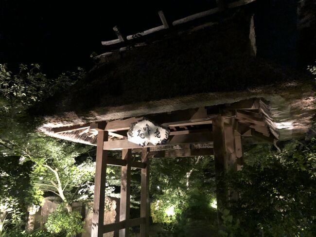 父の納骨後のお参りで母と2人で京都へ<br />母の年齢を考慮してゆったりとした旅行程にしました。<br /><br />一番の楽しみにしていた保津川下りは増水のため運航中止<br />次回の楽しみに取っておく事になりました<br />それでも美味しい物を頂き、伺いたかった寺院へ行き<br />1泊2日の京都旅を満喫出来ました<br /><br />移動は自家用車のみ<br />宿泊先は亀岡にある『すみや亀峰菴』で1泊しました<br /><br /> <br /><br /><br />