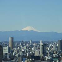 2021年2月 東京のホテルで巣籠もり その5