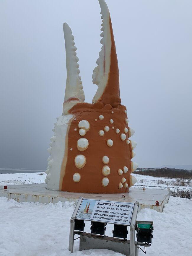 去年 網走、知床で流氷を見て大感動。<br />今年は紋別で流氷と思いわざわざ<br />関空ー羽田乗り継ぎ、羽田ーオホーツク紋別を特典航空券で発券IN<br />OUTは釧路ー関空をピーチで購入して行ってきました。<br />しかし今年はいつもいる時期に流氷がいない。<br />自然が相手なのは難しいとあらためて感じました。<br />おまけに今までに経験したことがない爆弾低気圧襲来だそうで自動車道が通行止めになり急遽今晩のホテルを探すはめに。<br />面白い経験をしましたが、温泉につかり美味しいごはんをいただいて満足満足。