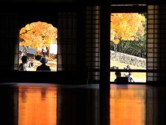 学び舎の床もみじ~閑谷学校の櫂の木