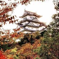 姫路出張と観光