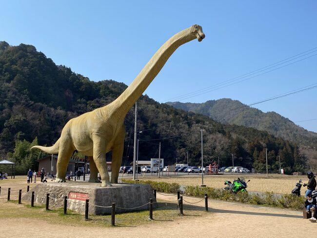 遠くへ行きたい気持ちを抑えてちょっと出かけました。丹波篠山から少し離れた丹波市にある恐竜の里、おにぎりがおいしい農家レストラン、織田家が藩主であった城下町柏原を散策します。