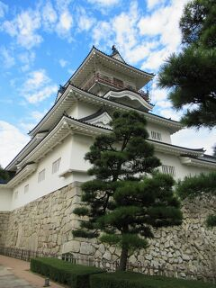 黒部⑤ 黒部峡谷の帰りにちょっと寄り道「富山城」「富山市役所展望塔」「とやま方舟」