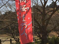 頼朝桜を観に佐久間ダムへ
