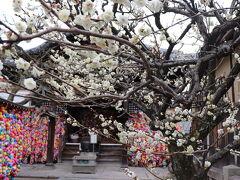 静かな、静かな京都