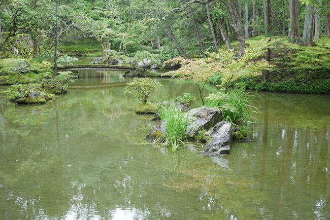 母との京都旅②