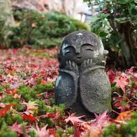 秋の京都で紅葉三昧 今度は女子旅 (1) 圓光寺・詩仙堂のお地蔵様と北野天満宮のライトアップ