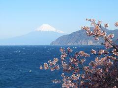 初春の静岡へ、ドライブ旅行①