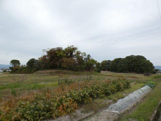 2020年11月1日(日)のお昼、京田辺市の北部、京奈和自動車道田辺北ICに近い大住地区の澤井家住宅から月読神社を訪ねた前後にこの地区の他のポイントもいくつか回った。月読神社の説明でも書いたが、地名の大住は約1300年前に九州南部の薩摩・大隅地方からこの地に移住した大隅隼人が、故郷を懐かしんで同じ読みに名付けたものが、時代を経て大住と云う漢字になったと考えられる。<br /><br />現在の京田辺市の北部を東西に走るJR学研都市線(片町線)と手原川より北側が1951年(昭和26年)に田辺町に編入されるまでがほぼ大住村だったようで、さらに云えば、1889年(明治22年)までは西半分は松井村だった。澤井家住宅がある大住岡村地区は、元々の大住村のほぼ中央に位置し、月読神社はそこから1㎞ほど西で、昔からの大住村の南西部に位置する。<br /><br />現在はJRの南側に大住ケ丘とか松井ケ丘とか大きなニュータウンが広がるが、これらは1970年代以降に開発されたところで、当時は山だった。ちなみに片町線は1898年(明治31年)にこの区間が関西鉄道として開通しているが、大住駅が出来たのは田辺町になった翌年の1952年。<br /><br />澤井家住宅から250mほど北西にあるのが大住車塚古墳。古墳時代中期、5世紀初期の築造と考えられる前方後方墳、智光寺(ちこんじ)山古墳とも呼ばれる。全長66mで、前方部は幅18m、高さ1.5m、後方部は一辺の長さ36m、高さ4.5m。古墳の周りには長方形の周濠の痕跡が残り、全長は約100mある。1974年に国の史跡に指定されている。<br /><br />棺が納められていた主体部は竪穴式石室か粘土槨であったと推測される。副葬品は不明。被葬者は6世紀初頭の第26代天皇の継体天皇の第8皇子と云われているが、この皇子は実在しなかったものと今は考えられている。まあ、時代があってないよな。<br /><br />南西側に並ぶ大住南塚古墳もほぼ同じ形・同じ大きさで、全長71mと少し大きい。こちらは発掘調査で4世紀終わり頃の築造とされている。被葬者は不明。こちらの周濠の一部は池として残っている。周濠をもつ前方後方墳が二基並ぶのは全国でも珍しい。どちらからも葺石と埴輪が発見されている。<br /><br />澤井家住宅のある大住岡村地区は古くから家が集まっていたようで、狭い区域に多くの寺社仏閣がある。澤井家住宅の南、直線距離だと100mほどのところにあるのは西光山円照寺。浄土真宗本願寺派のお寺と云うこと以外は不明。<br /><br />その向かいが法華寺。こちらは総本山身延山久遠寺の日蓮宗のお寺。山号は瑞應山。このお寺は由緒が分かっており、開創は室町時代で、大日堂盛行庵と称する醍醐三宝院の流派に属する真言密教の精舎として大住にその名を印していた。当時の本尊は雷除けの大日如来で、地域の信仰を集めていた。<br /><br />江戸初期の1638年、澤井家の縁を引く京都本國寺の名僧、喜見院日便上人が、その出身地に洛中の名刹曇華院宮や、三宝院門跡から寺領の分与を受け、六条本國寺第17世・鷲峰院日桓大僧正直筆の御本尊を頂き改宗、日蓮宗法華寺を建立。江戸中期の1799年の鐘楼堂再建の棟札には、曇華院宮・三宝院宮・旗本天野氏・澤井氏はじめ、村内外の氏名が連なっている。<br /><br />明治維新の鳥羽伏見の戦いの際には、曇華院宮が澤井家に避難されたが、このお寺に宮方の霊牌を安置して日々供養され、曇華院宮仮菩提所としてその所領を下賜されたが、大戦中の弱体化や戦後の農地解放に伴い、縮小を余儀なくされた。<br /><br />近年、1991年に開山日便上人第350遠忌を迎え本堂庫裡を新築。その後は京田辺市を中心に宇治市・城陽市・久御山町・八幡市・精華町・木津川市・枚方市と教線を拡大、また、青年信行組織「法華寺菩薩団」を結成し、宗教活動のみならず文化講座や芸術講演、コンサート、盂蘭盆の竹灯籠会などの地域社会に貢献すべく活動を展開している。<br /><br />本堂には法華経の救済世界を示した仏像の勧請、法華経守護の諸天善神が各種安置されている。題目宝塔を中心に釈迦如来・多宝如来が二仏並座し、上行・無遍行・浄行・安立行の四菩薩が左右に立ち添い、宗祖奠定の日蓮聖人大曼荼羅御本尊が背後に奉安されている。御本尊は久遠実成本師釈迦牟尼仏。永遠の昔から未来までずっとこの世に存在しているお釈迦様の意味で、それは実際に歴史上存在したお釈迦様を意味するのではなく、この世に存在する法華経の教えの原理そのものを意味する仏様だそうだ。<br /><br />山門は1990年に新築された薬医門。薬医門は2本の本柱の背後だけに控え柱を立て、切妻屋根をかけ