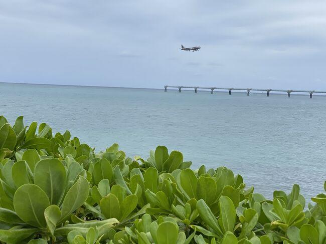 2020慶良間旅行最終日。<br />最終日は生憎の雨模様。<br />無人島渡って海潜ることも叶わず、高速船で早々に座間味島を後にしました。<br />この日は、本当に単なる沖縄の街観光という感じになりました。
