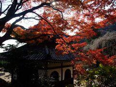 2011年12月 京都紅葉&食べまくりウォーキング 第2弾♪