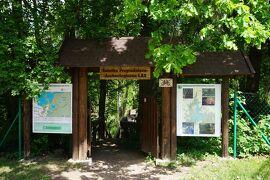 2019 三度目のポーランド*懐かしい美しいポドラシェ地方(5)ウィグリー国立公園