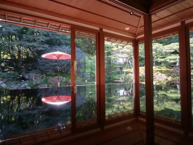近場でのんびりしたくて、大原三千院、延暦寺、旧竹林院、日吉大社を巡りました。お宿は、ロテルド比叡です。