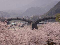 岩国・行波の神舞と桜満開の錦帯橋と安芸の宮島