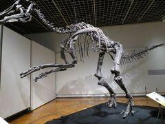 「北海道の恐竜展」=わ~い!カムイサウルス・ジャポニクスに再会できる!=を楽しむ
