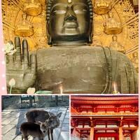 ついでの奈良ではなく・・・きちんとした奈良メインの旅 その2 東大寺~春日大社