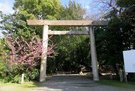 2021春、高蔵遺跡(1/4):2月17日(1):地下鉄で西高蔵駅へ、高座結御子神社、鳥居、彼岸桜、高蔵貝塚