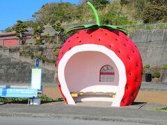 【3日目】長距離国内線に乗ろう!北海道と九州の旅