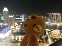 絶景のマレーシア・シンガポールの旅②