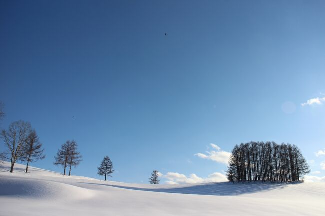2021年3月初め、暦の上では春ですが、北海道、そして美瑛町はまだ真冬と言っても良いくらい雪の中です。特に2月末の大雪で積雪は1mを超え、美瑛の丘の道路からは雪の壁を登らないと周囲の景色が見えない状態です。普段は景観の良いスポットには広い駐車場もあるのですが、この時季は全てと言っていいほど除雪していないので車は停められません。また、道路幅も狭くなりUターンもままならない時期でした。ただ、3月に入ると徐々に優しい春の陽が降り注ぐようになり、私も誘われるように近郊のドライブに出かけ、車窓から景観の良い丘を探しながら、写真に収めてきました。また、途中にJR美馬牛駅の様子や雪原の畑に融雪剤を撒く光景にも遭遇して春の散策を楽しみました。前回のⅠの旅行記で紹介したスポットともいくつか重なりますが、撮影の仕方や時刻や天候、空の様子等も微妙に変わっているので雰囲気を汲み取っていただければうれしいです。
