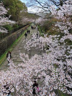COVID-19対策の自主隔離を終えて☆京都初日ー2 南禅寺周辺