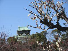 大阪城公園はうららかな梅日和でした