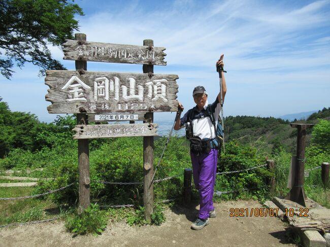 関西には六甲全山縦走と並ぶダイヤモンドトレールという縦走コースがある。<br /><br /> 屯鶴峯から二条山、岩橋山、葛城山、金剛山、紀見峠、岩湧山を通り槇尾山の施福寺までの約50km。<br /><br /> 一気に縦走は難しいので葛城山と紀見峠で二泊し、三分割で行くのが中級コースだ。<br /><br /> 5年前にこの分割コースに挑戦したドラゴンであったが、暑さと水不足と体力不足のため岩橋山にも辿り着けずに初日敗退となった。<br /><br /> 翌々日、紀見峠から施福寺まで歩いたが平石峠から紀見峠までが未踏破になっていた。<br /><br /> 今回は残りを一泊二日で歩く予定だ。<br /><br /> 息子に平石峠まで車で送って貰い岩橋山を目指す。<br /><br /> https://www.youtube.com/watch?v=5Sj3SuUKjIk<br />