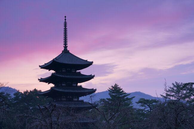友人と奈良に1泊2日で行き、お寺巡りをして来ました。<br />まだ春の花が咲く時期には早いのですが人出の少ない時期なのでゆったりと<br />観光ができました。今回の旅行記は寺社の紹介を目的として作成しました。<br /><br />1日目は西大寺、菅原天満宮、喜光寺、垂仁天皇陵、奈良公園、興福寺を巡りました。<br />2日目は日本で最初の世界文化遺産の法隆寺、信貴山の朝護孫子寺を巡りました。<br /><br /><br />今回使用の撮影機材は<br />SONY α7RⅢ   レンズ 24-105mm 、レンズ 16-35mm<br />