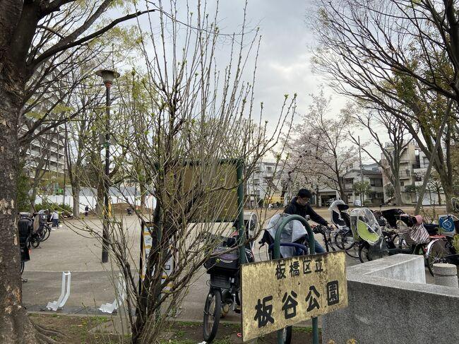 3月15日の週、桜の花が日当たりで咲き始めた。3月22日今週に満開を迎えるかなと感じたが、予定等があり都合が悪い日や雨の日があったので、散歩を諦めていたのでした。<br />今日(3月26日)は、風が強いが晴れているので、散歩と買い物ができると花見散歩を兼ねて出かけることにしました。<br />石神井川を下っていくと、川沿いの両側にある歩道では、じいちゃんばあちゃんと多くの年寄りに出会う。中には若いカップルや若い夫婦もおり、ステイホーム中ではなかろうかと感じた。公園を通と多くの子供が走り回り遊んでおり、母親が集まり井戸端会議をしていました。<br />3月27日は、朝から風もなく晴れていたが、コロナの影響か、花見に出かける人々は例年より少なかったようでした。<br /><br />人を避けて写真を撮ったので、画面に人が少ないと思われるかもしれませんが、花見客は、も少し多い状態です。<br /><br />今、第4のコロナの波が来初めているという。コロナの菌をうつさないだけでなく、うつされることを考えると、外出が自然と少なくなる。<br /><br />年間データーから、死者は、1万人位で、インフルエンザと同じ位というが、菌が強いそうである。恐れ過ぎないように、恐れている。<br /><br />アメリカやヨーロッパ、南米等ではコロナにかかる人が多そうだが、アジアでは、少ないという。生活習慣の違いや、人種遺伝子等の違いではないかと研究が進んでいるそうだ。<br /><br />ワクチン外交が進んでおり、支配の拡大になり、影響化拡大は戦争だという人もいる。