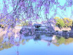 千代田の桜の巻