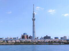 隅田川の桜の巻