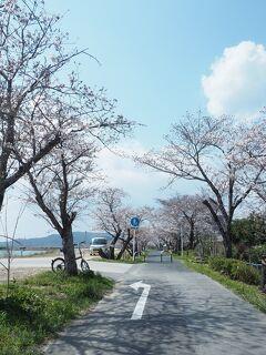 ☆浜松さんぽ★庭あそniwaaso concierge・ひとりでお花見☆