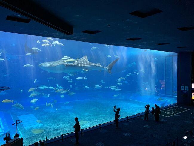 延び延びになった沖縄旅行<br />2日目は沖縄本島北部を観光<br />ホテルに戻りクラブラウンジでまったりした時間を過ごしました。